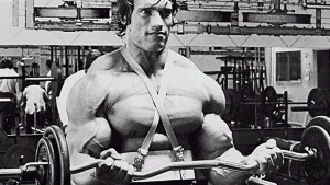 Arnold-Curls