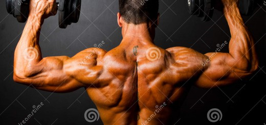 http://www.dreamstime.com/stock-photography-bodybuilder-training-image24728582